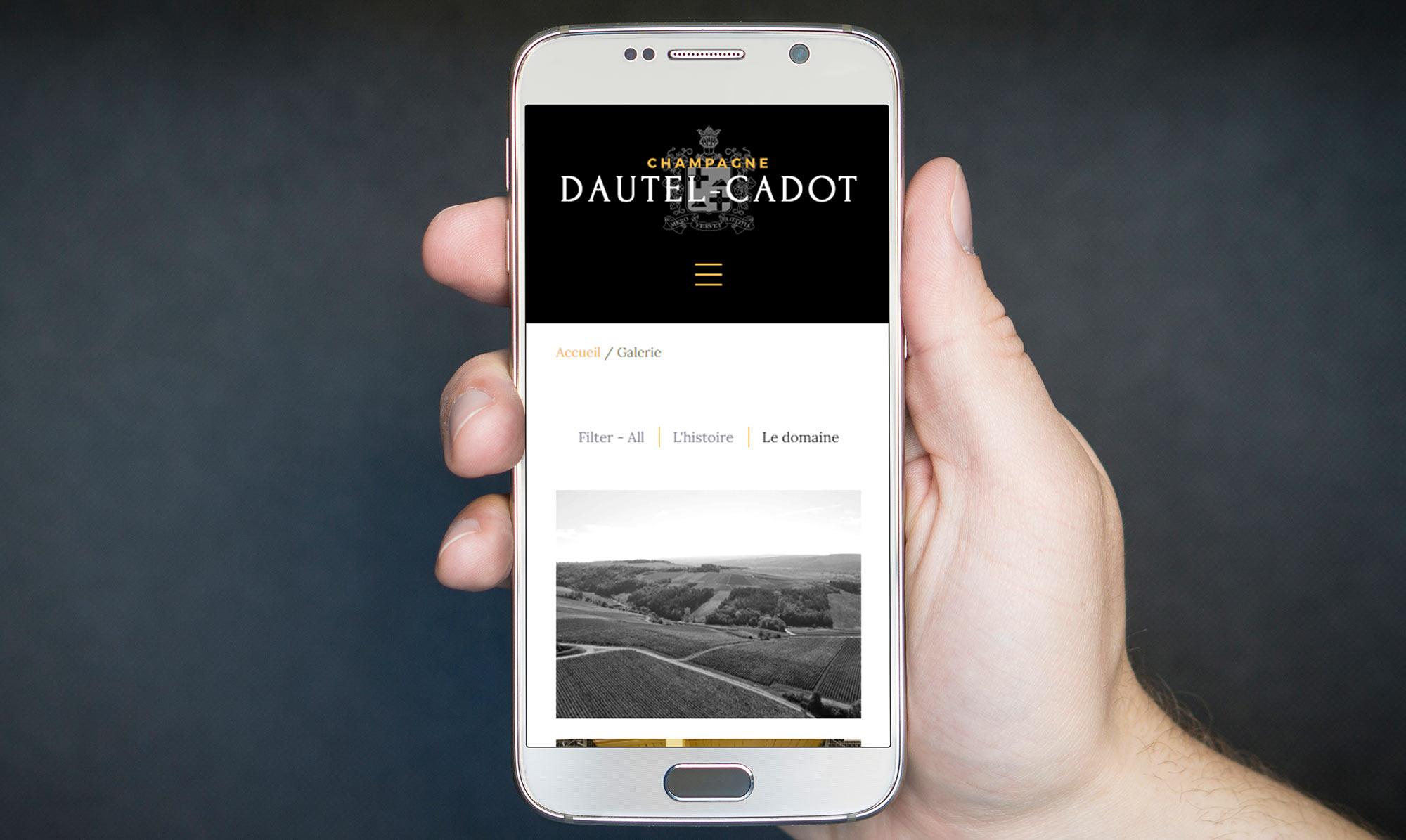 ikadia_dautel-cadot_fond2.jpg
