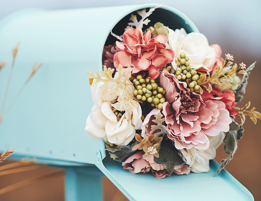 ikadia_portfolio_nature-fleurs